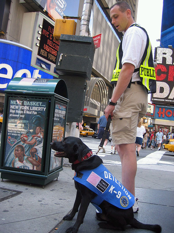 RUss_and_Shadow_times_square.jpg